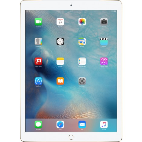 Apple iPad Pro 12.9 256GB Wifi + Cellular Goud