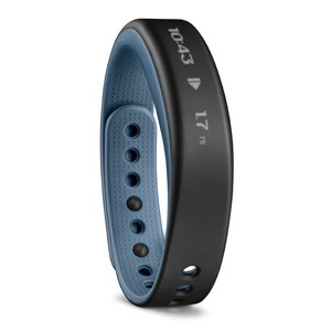 Garmin Vivosmart Blue Large
